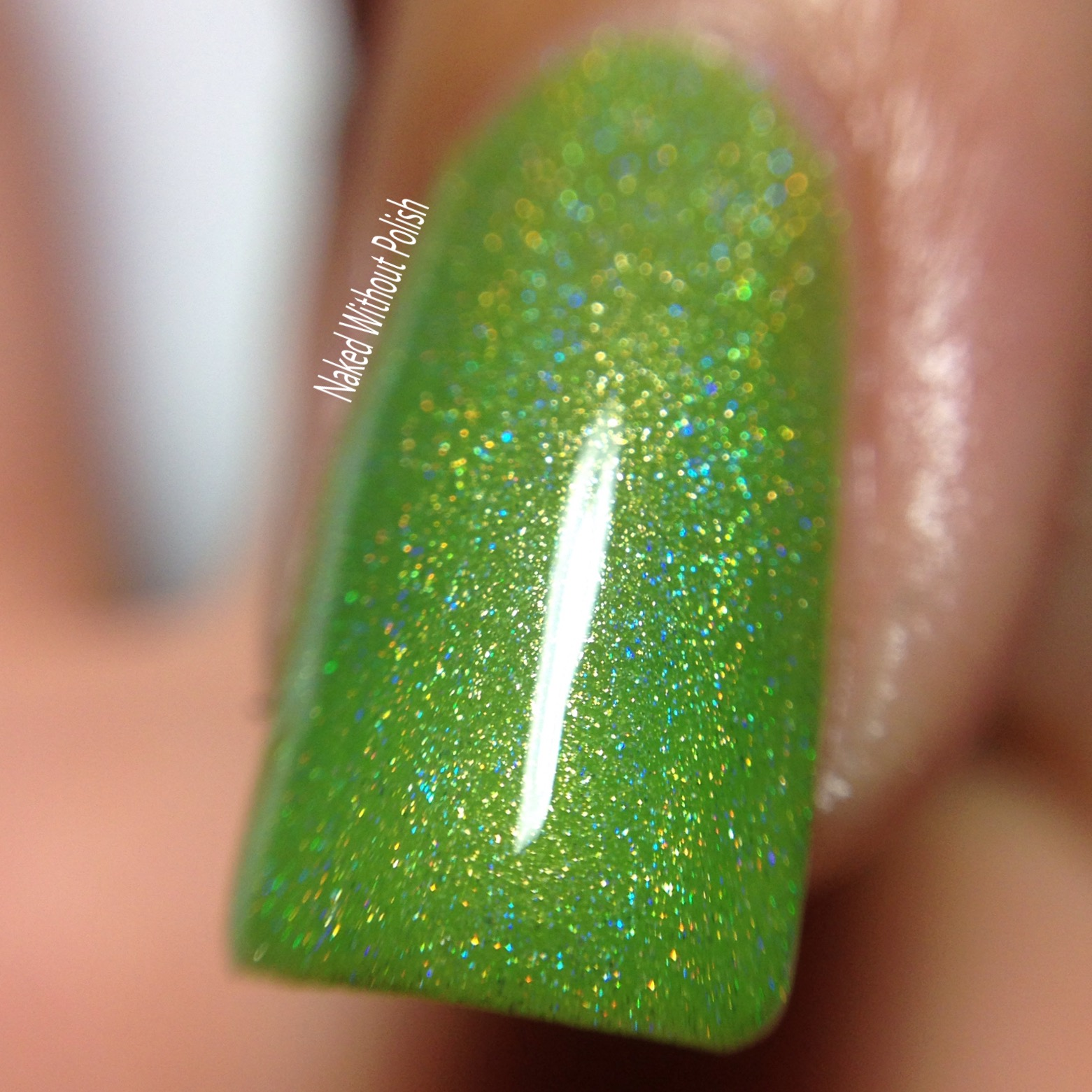 LynBDesigns-Lime-and-Lime-Again-9