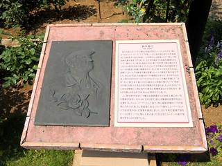 谷津バラ園 09