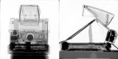 polaroid SX-70 x-ray