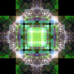 Mandala Spin
