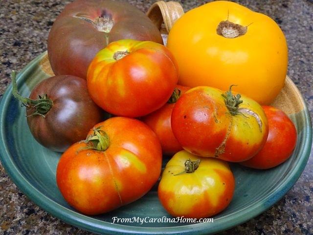 Tomatoes at From My Carolina Home