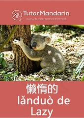 Daily Chinese Flashcard