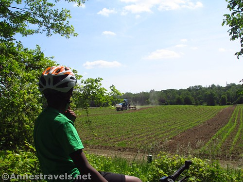 Watching a tractor work the fields along the Ontario Pathways Rail Trail, New York