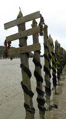 St-Cast plage des 4 Vaux (13)