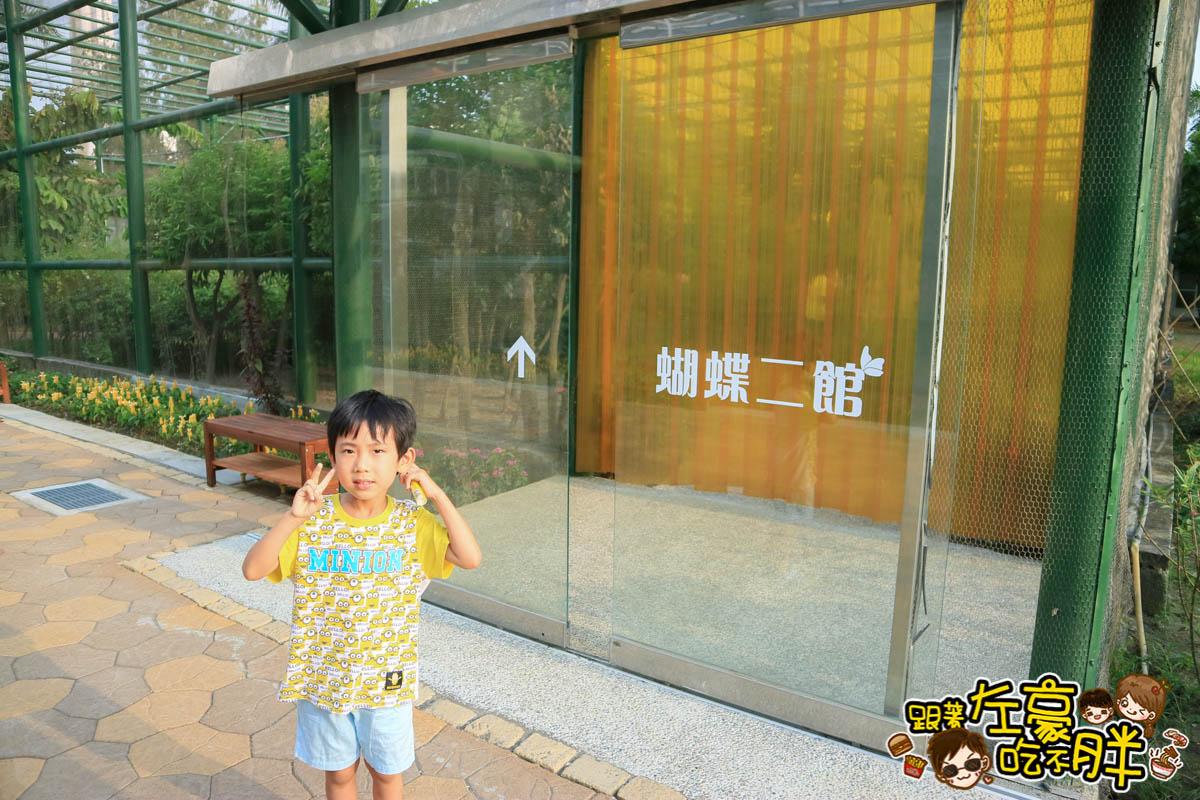高雄金獅湖蝴蝶園-5