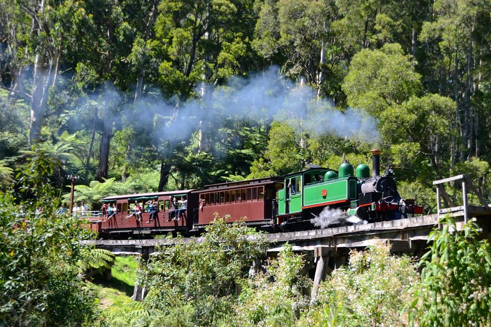 puffing billy_s