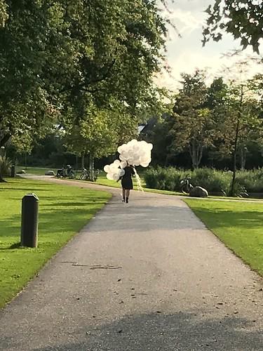 Heliumballonnen Brasserie Vroesenpark Rotterdam Blijdorp