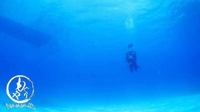 3本目も黒島ブルーがいい感じ♪