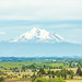 Shasta by Thomas Hawk