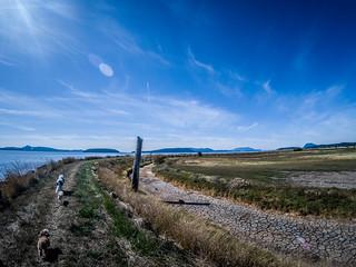 Skagit Flats-16