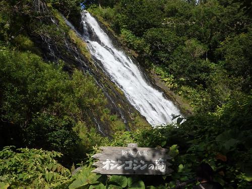 こちらは知床八景のひとつ、オシンコシンの滝