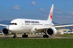 JAL Japan Airlines Boeing 787-8 JA830J
