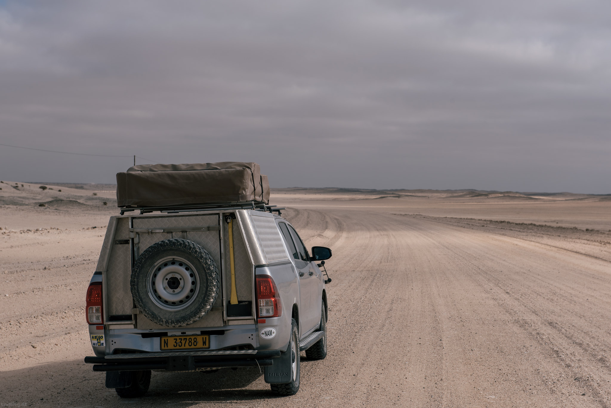 Survive the desert