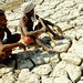 Maharashtra's drought-hit farmers without bank accounts denied aid