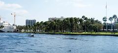 Scenic river scape