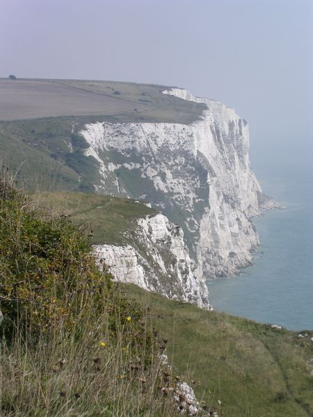 pc the white cliffs