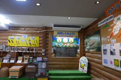 fujiiyohojo020
