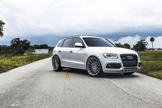 """SQ5 - Brushed Stainless 22"""" M615"""