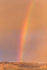 Rainbow 21aug17