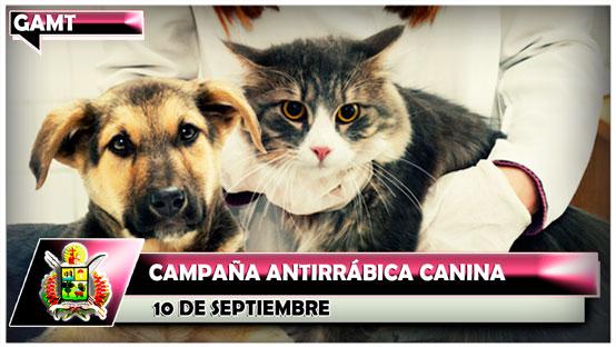 campana-antirrabica-canina-10-de-septiembre