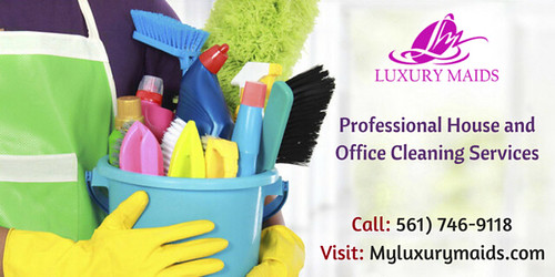 Professional House and Office Cleaning Services
