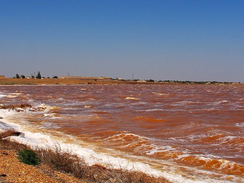 Red salt lake of Perekop - 3