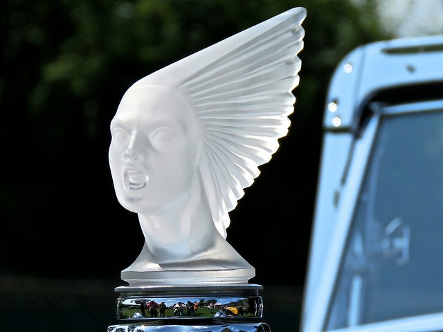 Delage Hood Ornament