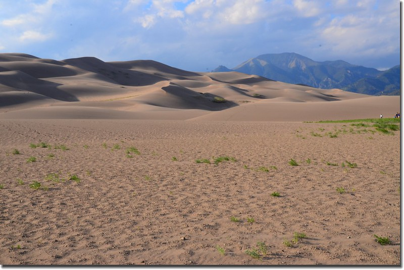 Dusk at Great Sand Dunes National Park  (3)