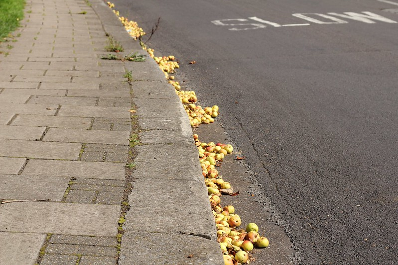 The apple road