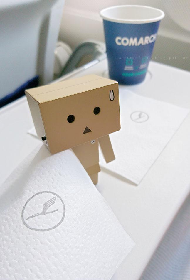 Danbo on the flight