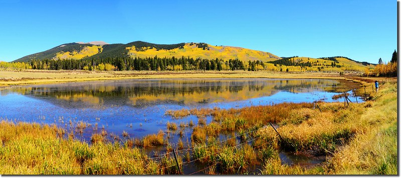 Fall colors, Kenosha Pass  (52)