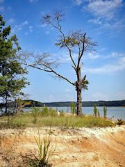 2017.08.21_Visit to Lake Hartwell