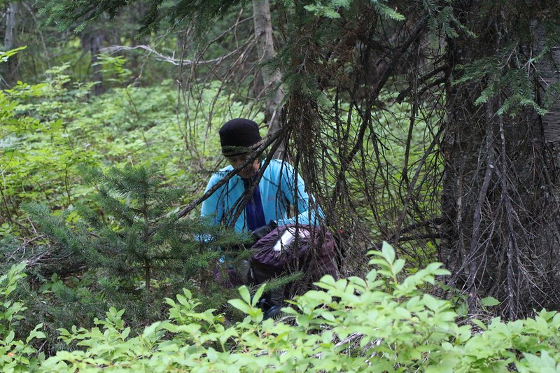 We grabbed our stashed backpacks just off the trail in the undergrowth, and prepared to head out into the wilderness