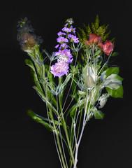 bouquet2-lab