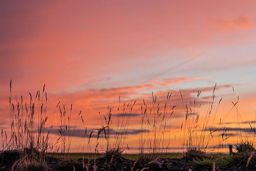 hotel ranga island iceland blue hour sunset sky purple vacation 2017 august sony alpha a7r vario tessar 1635mm fullframe fe lens f4