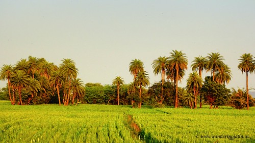Bundi countryside