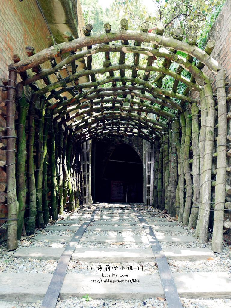 台北信義區一日遊景點和興炭坑蝙蝠洞 (11)