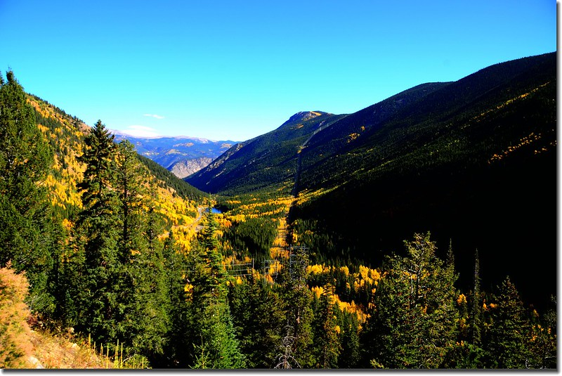 Fall colors, Guanella Pass, Colorado (32)