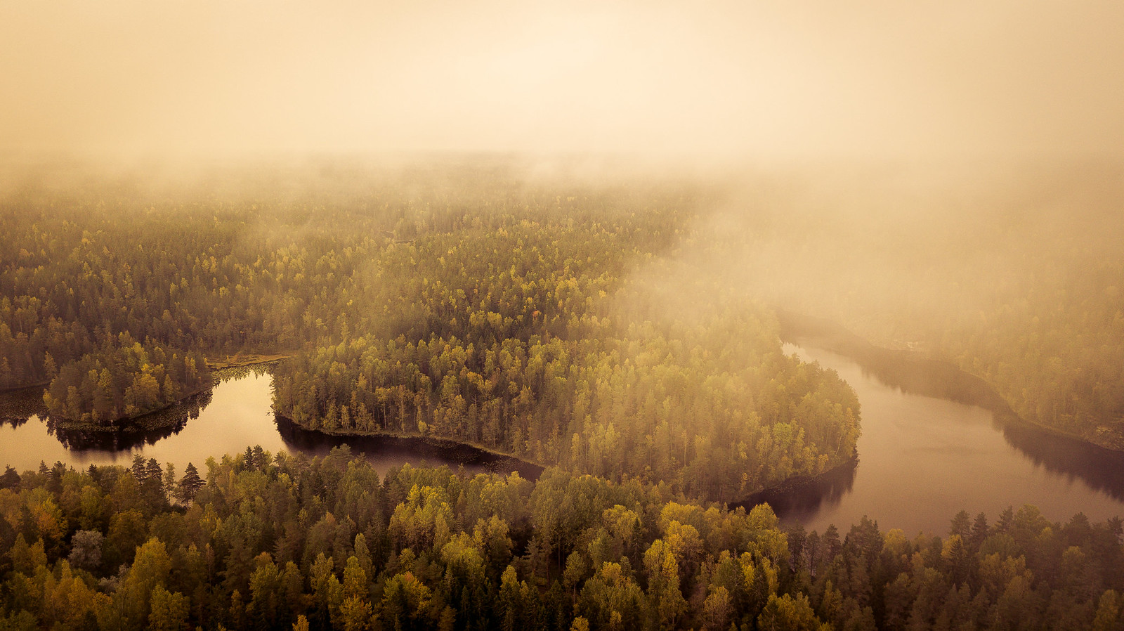 Metsiä, järviä – kaunista luontoa