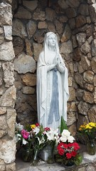 Mary of the Immaculate Co inception - Santa Maria, CA