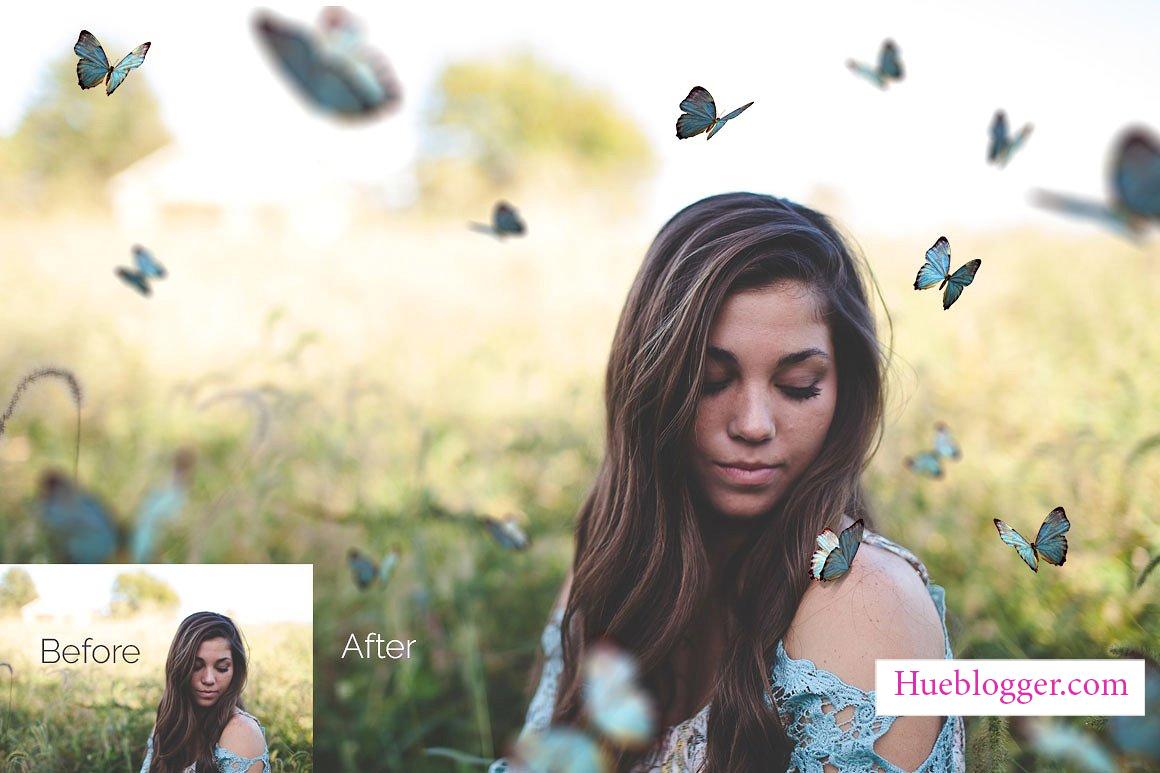 20+ PNG bướm bay lượn tuyệt đẹp