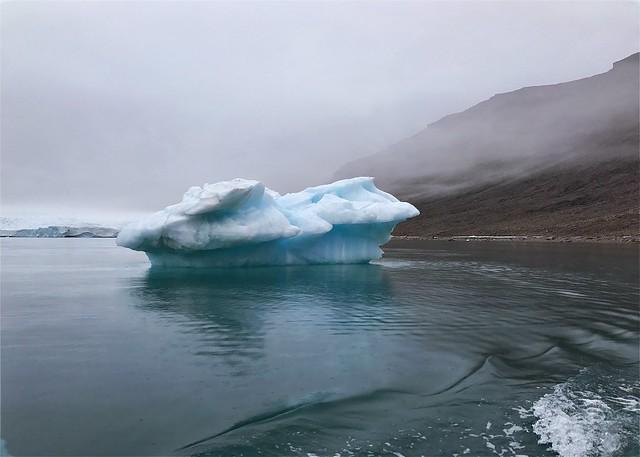 Croker Bay beauty, Devon Island, Nunavut