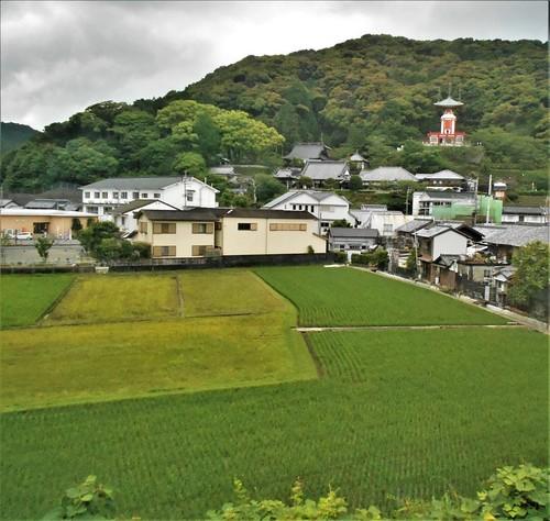 jp-Kannoura-Tokushima-train (11)