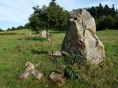 L'alignement de menhirs de la Bouaderie près de Gosné - Ille-et-Vilaine - Septembre 2017 - 08 - Photo of Liffré