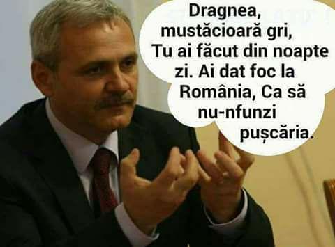 Cea mai proasta gluma: Romania condusa de un cocalar penal, Liviu Dragnea, vrea sa intre in Schengen