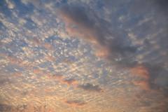 Cloudy skies over Carmel Meadows/sunrise