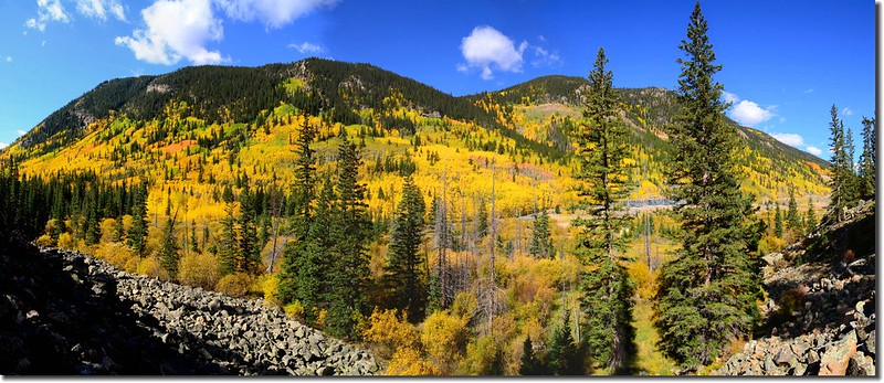 Fall colors, Guanella Pass, Colorado (25)