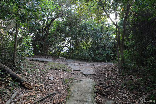 Braemar Hill