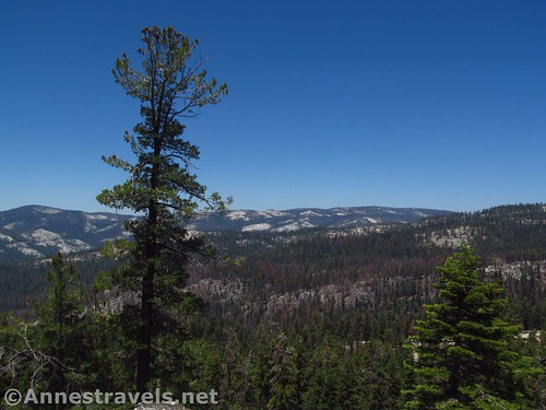 Looking west from Indian Rock Arch in Yosemite National Park, California