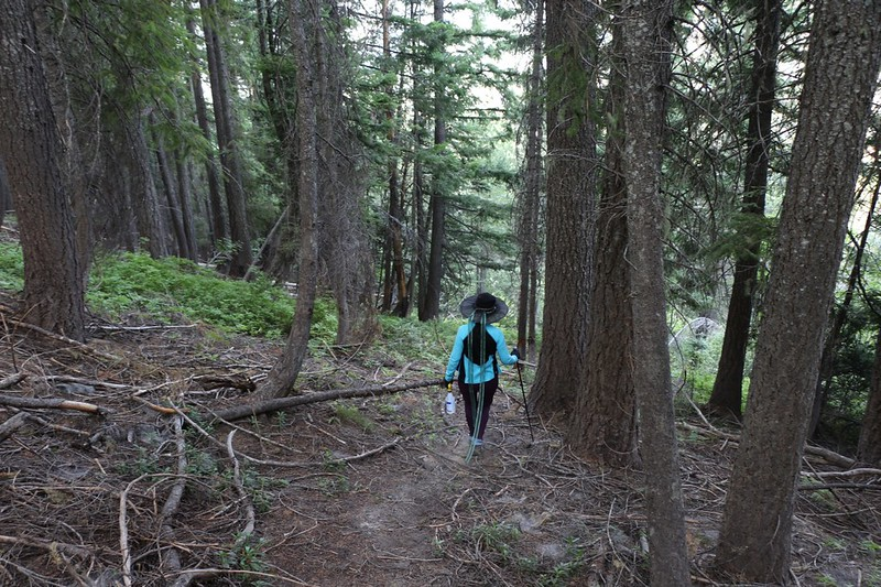 Bushwhacking back down to the Trinity Trailhead to avoid the mile-long switchbacks, but it was STEEP
